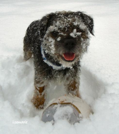 snowlek3